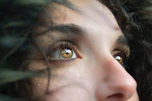 closeup photo of person